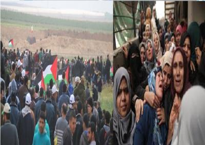 اوروبا تطالب إسرائيل بالتحقيق في مقتل فلسطينيين على حدود غزة